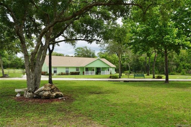 575 W Sharp Lane, Lecanto, FL 34461 (MLS #779406) :: Pristine Properties