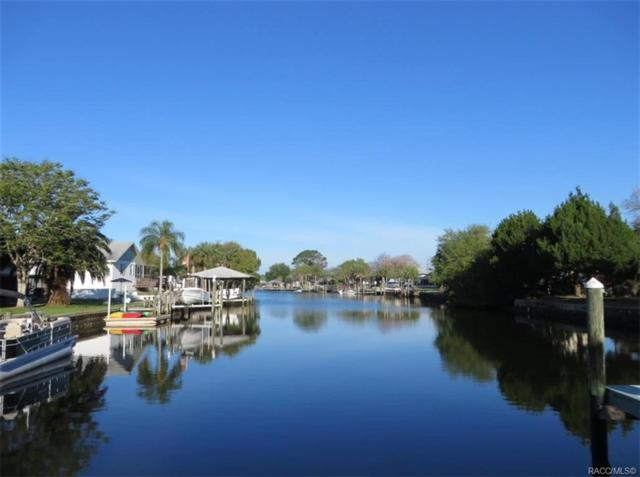 11675 W Dixie Shores Drive, Crystal River, FL 34429 (MLS #779417) :: Plantation Realty Inc.