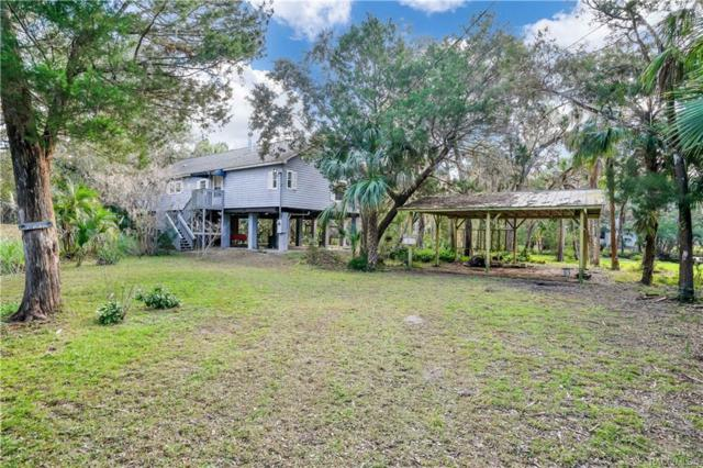 6548 S Beagle Drive, Homosassa, FL 34448 (MLS #779439) :: Plantation Realty Inc.