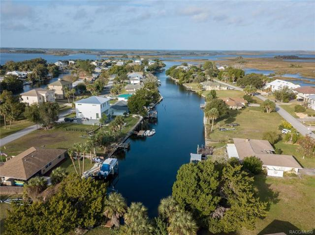 11645 W Dixie Shores Drive, Crystal River, FL 34429 (MLS #779441) :: Plantation Realty Inc.