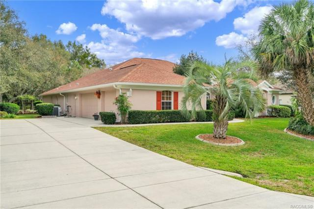 5 Woodlee Court S, Homosassa, FL 34446 (MLS #779444) :: Plantation Realty Inc.