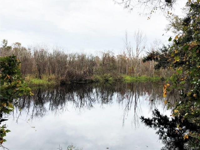 11731 E Robin Lane, Floral City, FL 34436 (MLS #779456) :: Plantation Realty Inc.