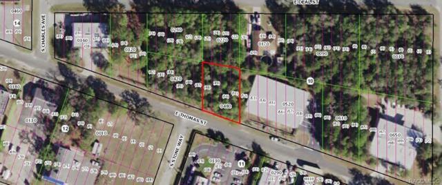 3081 E Thomas Street, Inverness, FL 34453 (MLS #779488) :: Plantation Realty Inc.