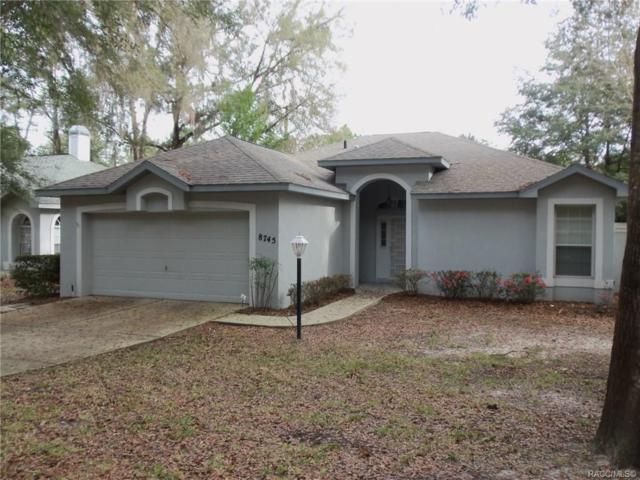 8745 SW 192nd Court Road, Dunnellon, FL 34432 (MLS #779500) :: Plantation Realty Inc.