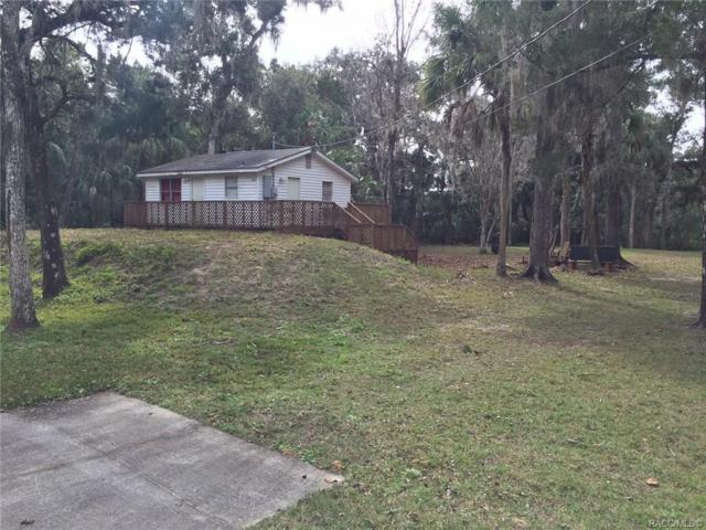 11064 W Grybek Drive, Homosassa, FL 34448 (MLS #779505) :: Plantation Realty Inc.