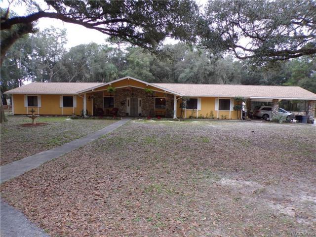 9224 N Eubanks Terrace, Dunnellon, FL 34433 (MLS #779548) :: Plantation Realty Inc.