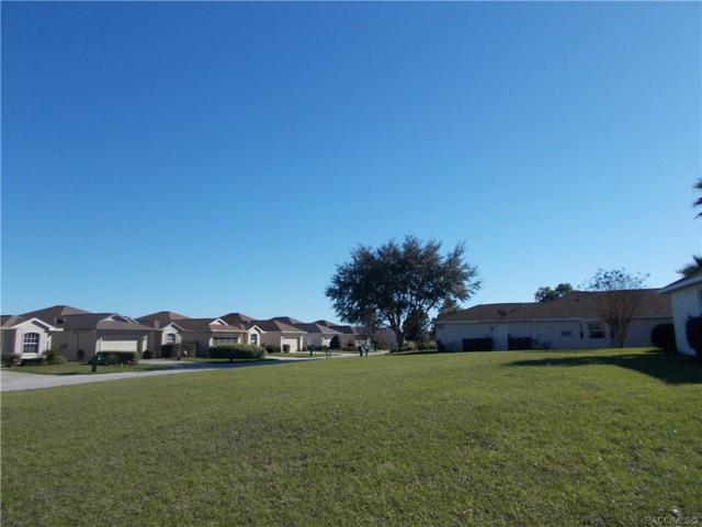 162 W Zoe Court, Lecanto, FL 34460 (MLS #779566) :: Plantation Realty Inc.