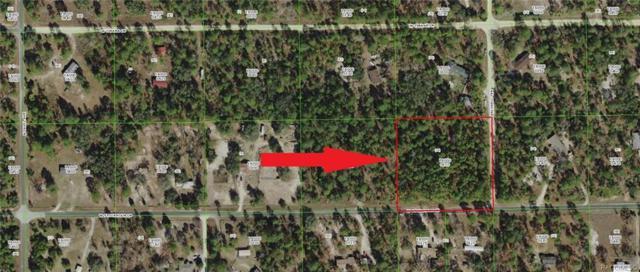 5849 W Stockholm Lane, Dunnellon, FL 34433 (MLS #779571) :: Plantation Realty Inc.