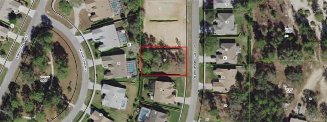 6212 N Whispering Oak Loop, Beverly Hills, FL 34465 (MLS #779582) :: Plantation Realty Inc.