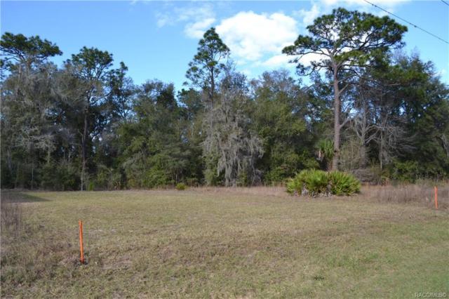 7395 W Dunnellon Road, Dunnellon, FL 34433 (MLS #779613) :: Plantation Realty Inc.