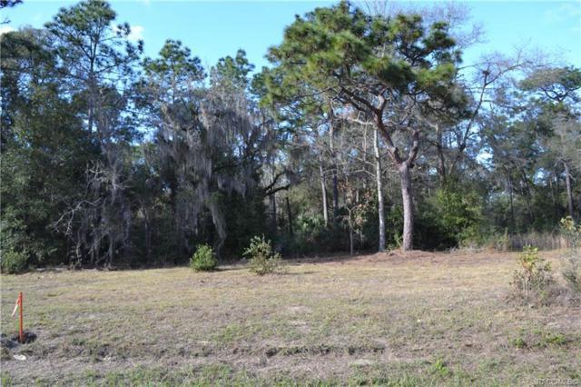 7407 W Dunnellon Road, Dunnellon, FL 34433 (MLS #779615) :: Plantation Realty Inc.