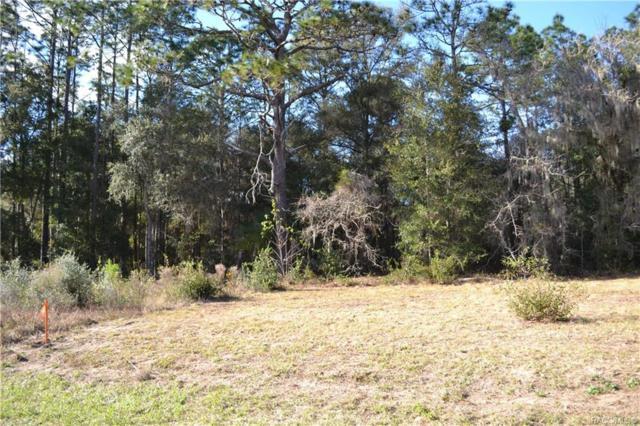 7411 W Dunnellon Road, Dunnellon, FL 34433 (MLS #779616) :: Plantation Realty Inc.