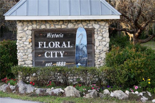 10367 E Roo Lane, Floral City, FL 34436 (MLS #779617) :: Plantation Realty Inc.