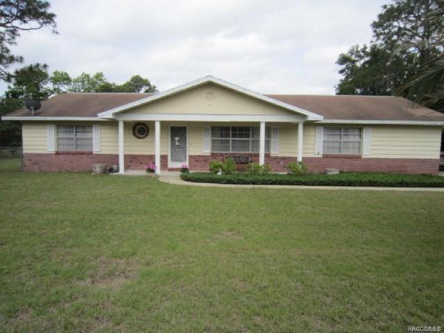 5640 S Kline Terrace, Inverness, FL 34452 (MLS #779625) :: Plantation Realty Inc.
