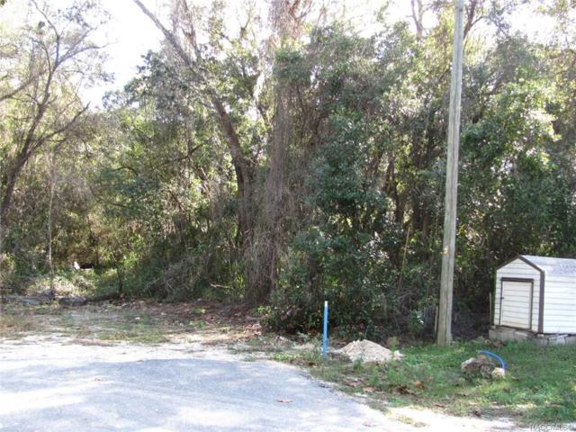 9318 W Green Bay Lane, Crystal River, FL 34428 (MLS #779627) :: Plantation Realty Inc.