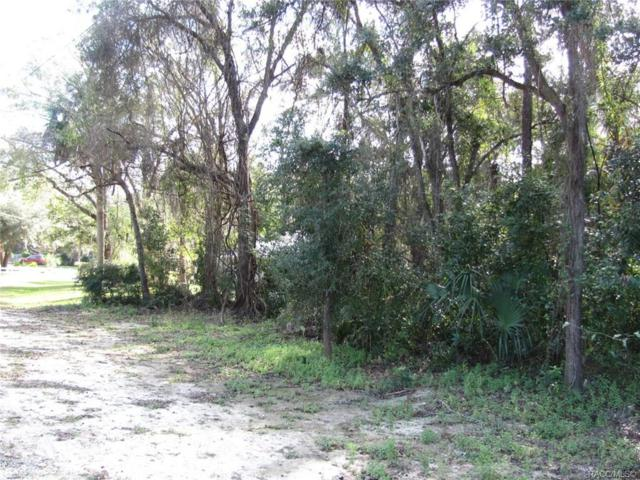 9314 W Marquette Lane, Crystal River, FL 34428 (MLS #779631) :: Plantation Realty Inc.