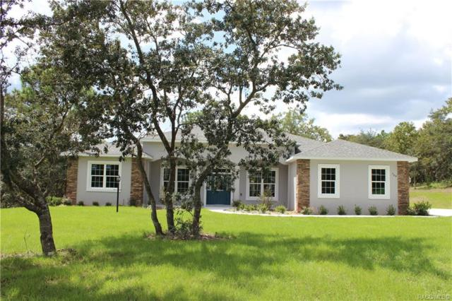 768 N Man O War Drive, Inverness, FL 34453 (MLS #779632) :: Plantation Realty Inc.