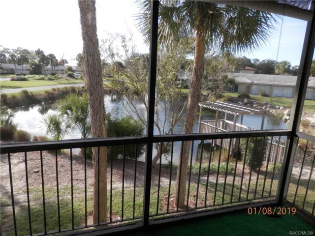 1272 N Seagull Point, Crystal River, FL 34429 (MLS #779645) :: Plantation Realty Inc.