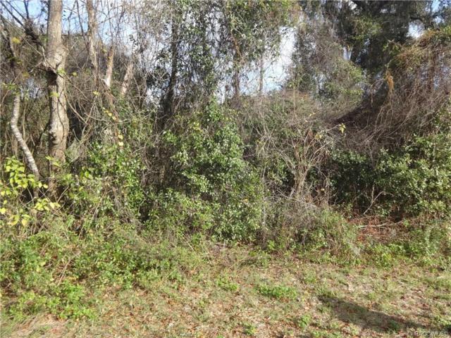 6161 E Penrose Street, Inverness, FL 34452 (MLS #779662) :: Plantation Realty Inc.