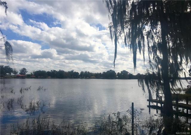 6718 S Merleing Loop, Floral City, FL 34436 (MLS #779666) :: Plantation Realty Inc.
