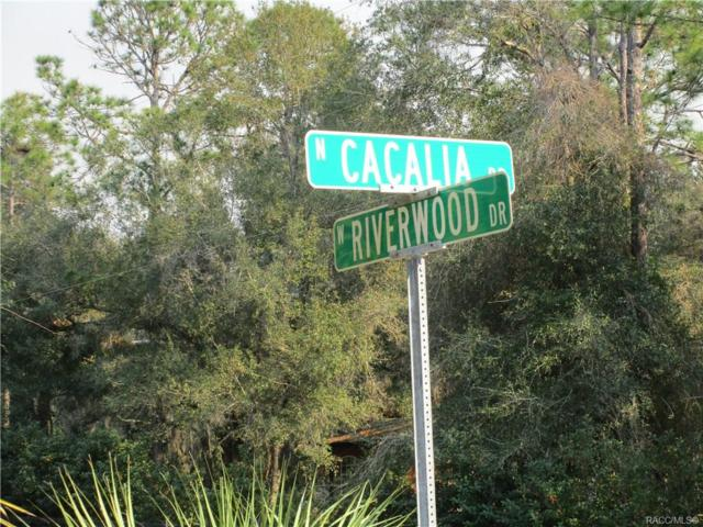 8990 N Cacalia Drive, Crystal River, FL 34428 (MLS #779668) :: Plantation Realty Inc.