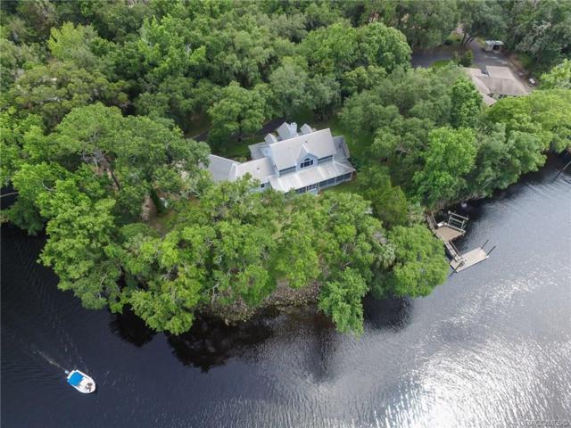 10700 N Sunflower Point, Crystal River, FL 34428 (MLS #779684) :: Plantation Realty Inc.