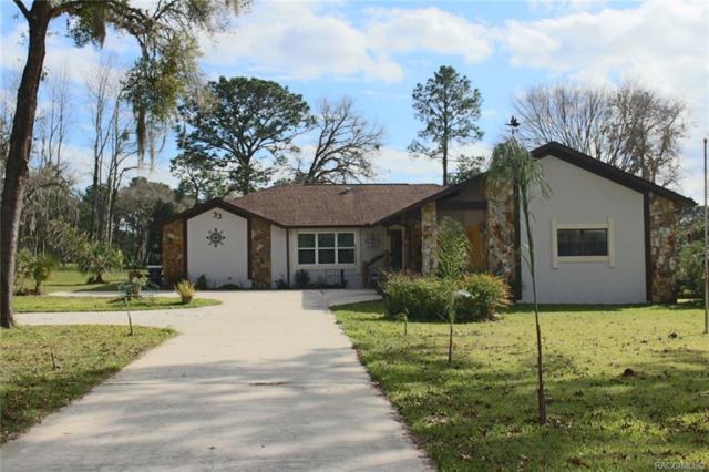 33 Bumelia Court, Homosassa, FL 34446 (MLS #779704) :: Plantation Realty Inc.