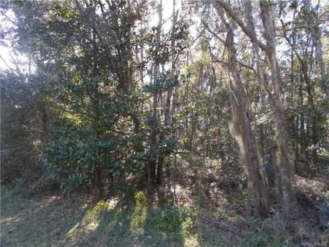 586 E Reehill Street, Lecanto, FL 34460 (MLS #779721) :: Plantation Realty Inc.