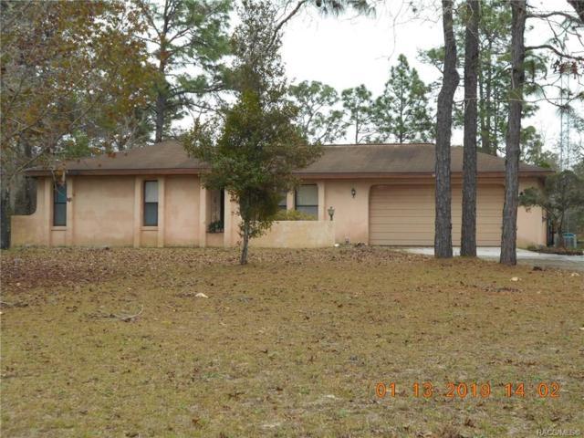8051 N Aden Terrace, Dunnellon, FL 34433 (MLS #779737) :: Plantation Realty Inc.