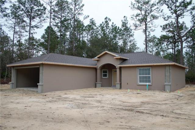 1536 W Newbury Street, Citrus Springs, FL 34434 (MLS #779746) :: Plantation Realty Inc.