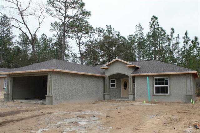 1552 W Newbury Street, Citrus Springs, FL 34434 (MLS #779749) :: Plantation Realty Inc.