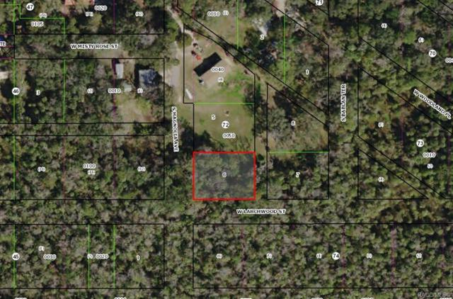 5761 S Magnolia Avenue, Homosassa, FL 34448 (MLS #779759) :: Plantation Realty Inc.