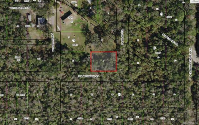 5740 S Bablan Terrace, Homosassa, FL 34448 (MLS #779762) :: Plantation Realty Inc.