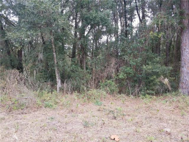 3677 S Ventura Avenue, Inverness, FL 34450 (MLS #779774) :: Plantation Realty Inc.