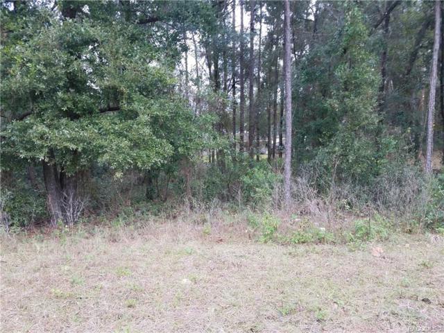 3691 S Ventura Avenue, Inverness, FL 34450 (MLS #779777) :: Plantation Realty Inc.