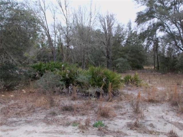 LOT 12 SW South Hill Court, Dunnellon, FL 34431 (MLS #779803) :: Plantation Realty Inc.