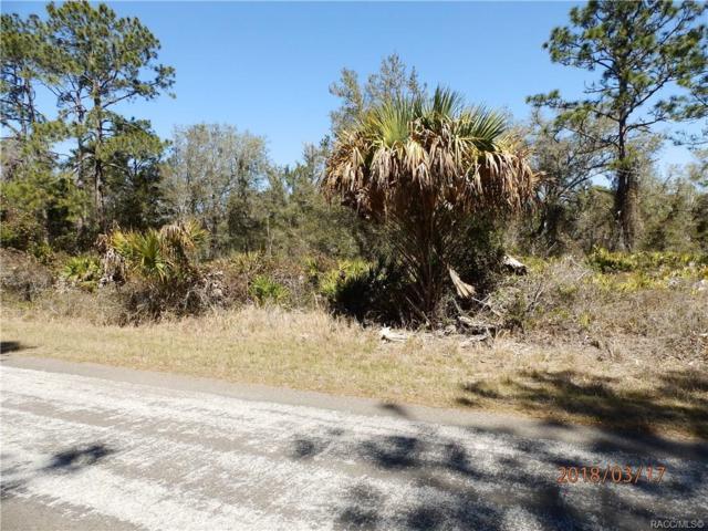 11366 W Dragonhead Drive, Crystal River, FL 34428 (MLS #779854) :: Plantation Realty Inc.