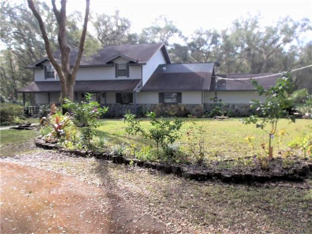 9350 SW 219th Court, Dunnellon, FL 34431 (MLS #779864) :: Plantation Realty Inc.