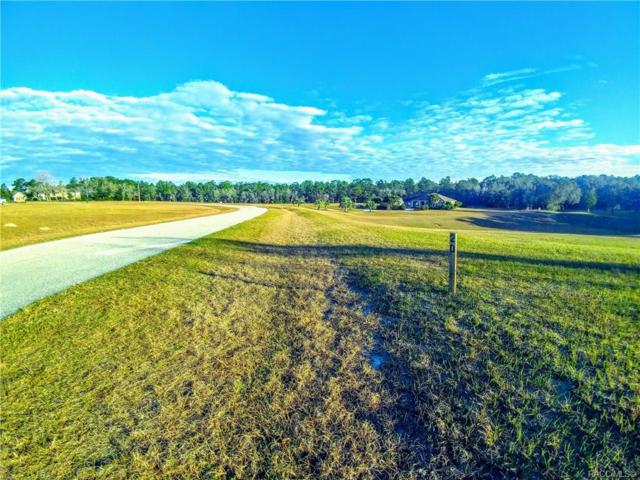 1371 E Triple Crown Loop, Hernando, FL 34442 (MLS #779932) :: Plantation Realty Inc.