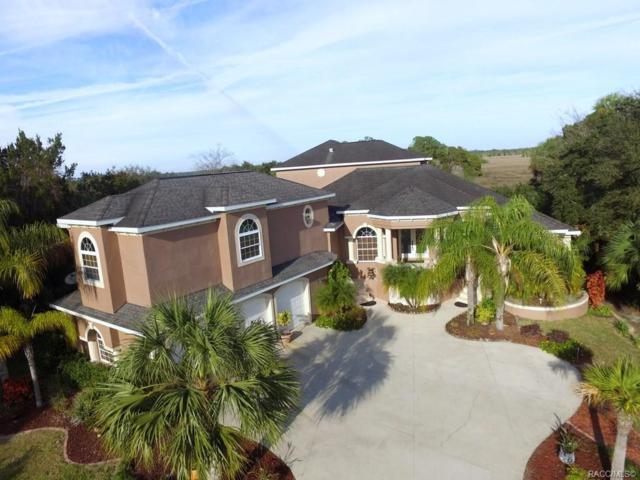 11537 W Dixie Shores Drive, Crystal River, FL 34429 (MLS #779935) :: Plantation Realty Inc.