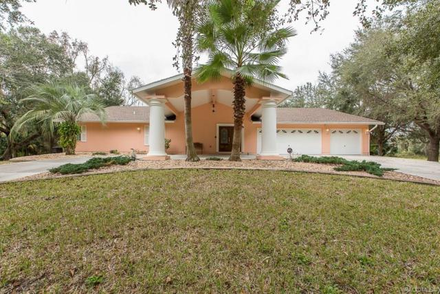 4724 S Myrtle Way, Homosassa, FL 34448 (MLS #779974) :: Plantation Realty Inc.