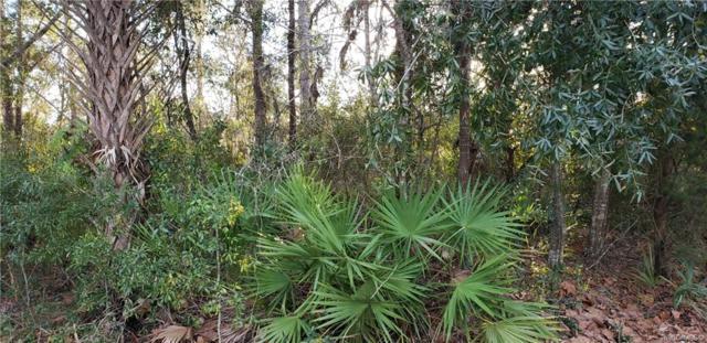 9801 W Plum Rose Court, Crystal River, FL 34429 (MLS #779996) :: Plantation Realty Inc.
