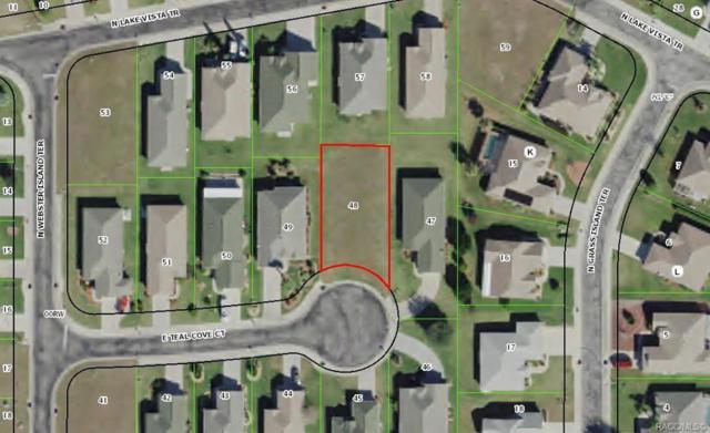 3795 E Teal Cove Court, Hernando, FL 34442 (MLS #780006) :: Plantation Realty Inc.