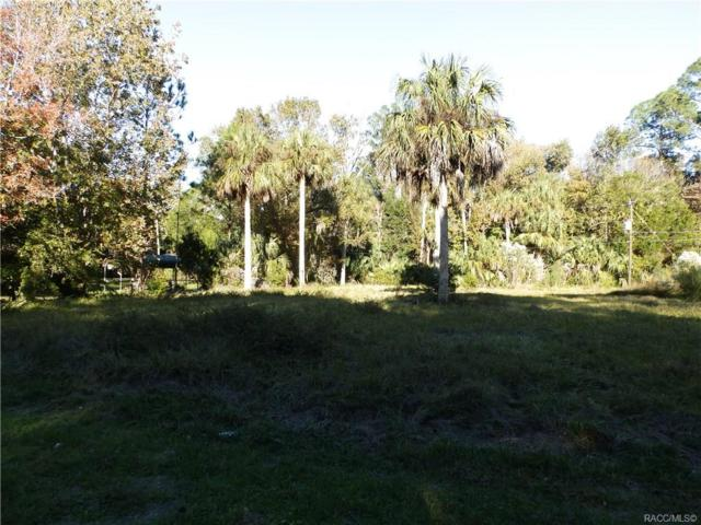 00 SW 65th Street, Yankeetown, FL 34498 (MLS #780034) :: Pristine Properties