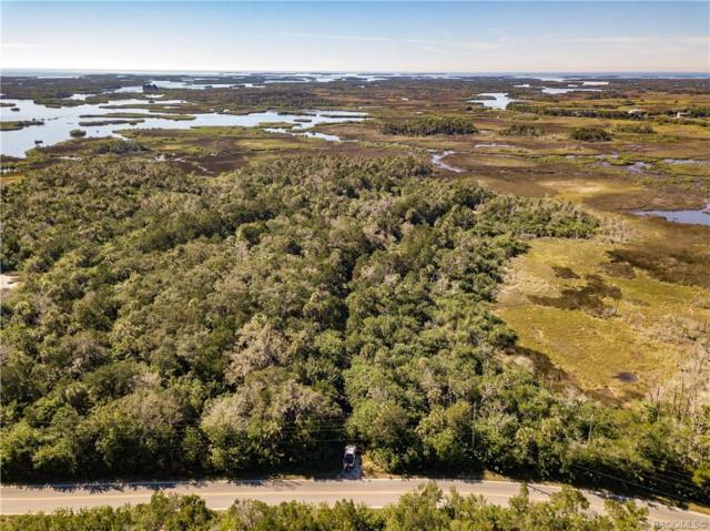 14388 W Ozello Trail, Crystal River, FL 34429 (MLS #780035) :: Plantation Realty Inc.