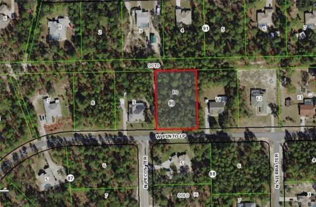 4807 W Pinto Loop, Beverly Hills, FL 34465 (MLS #780071) :: Plantation Realty Inc.