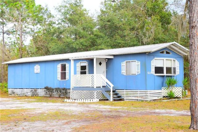 6615 W Snow Bird Court, Homosassa, FL 34446 (MLS #780083) :: Plantation Realty Inc.