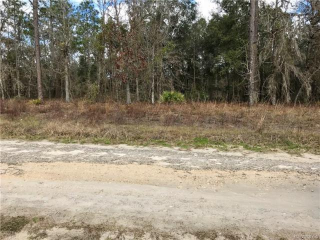 5401 N Lace Point, Dunnellon, FL 34433 (MLS #780086) :: Pristine Properties