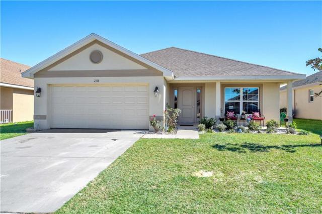 7116 Wirevine Drive, Brooksville, FL 34602 (MLS #780099) :: Pristine Properties