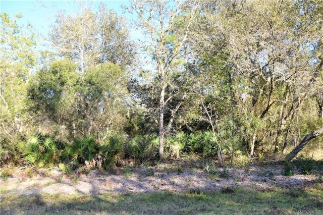 2691 S Columbine Avenue, Homosassa, FL 34448 (MLS #780157) :: Plantation Realty Inc.